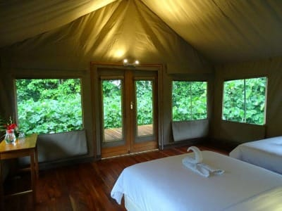 Scalesia lodge room